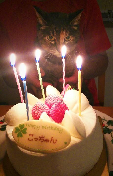 HAPPY BIRTHDAY こっちゃん