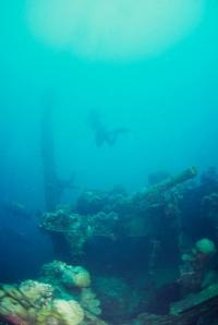 Palau22.jpg