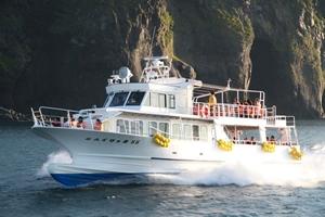 ゴジラ岩観光の遊覧船