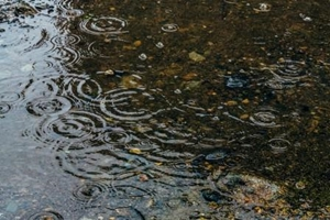 秋の長雨ですね