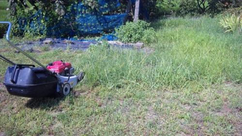 芝刈り機メンテ (2)