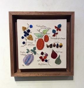 木の実の図鑑54000