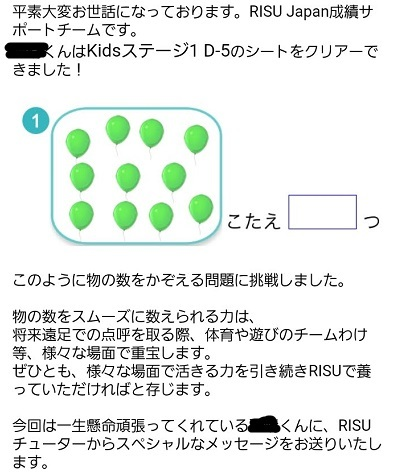 RISU算数11