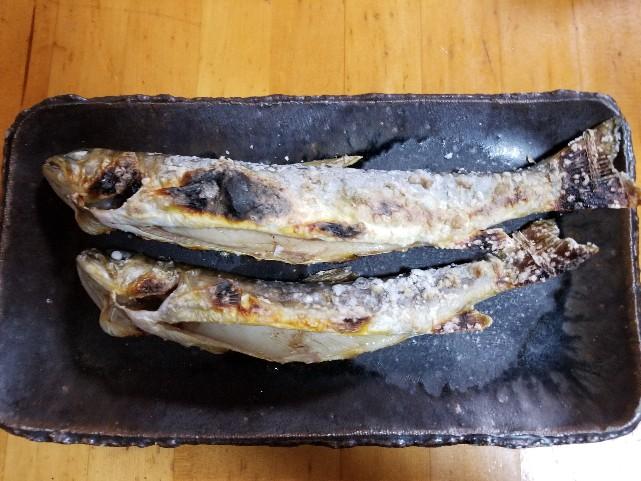 岩魚 (1)