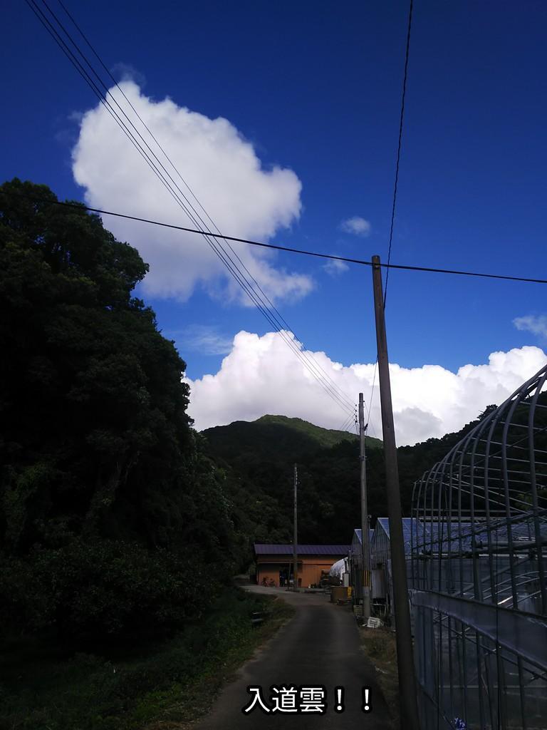 すごい入道雲!!