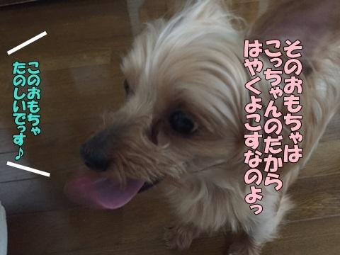 image718081202.jpg