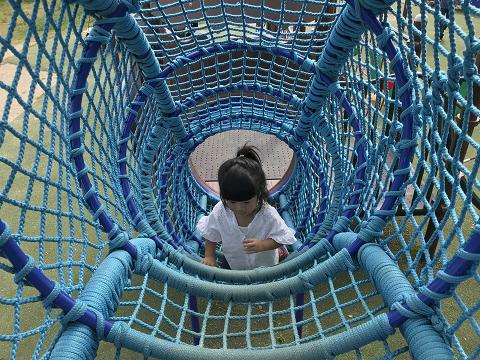 1443-網のトンネル
