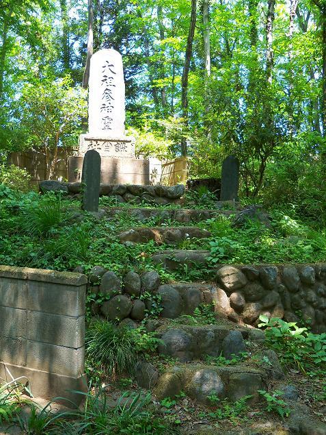 笹井の浅間山「笹井富士」@狭山市E