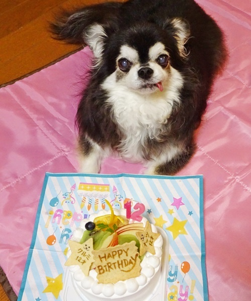 お誕生日のお祝いです♪