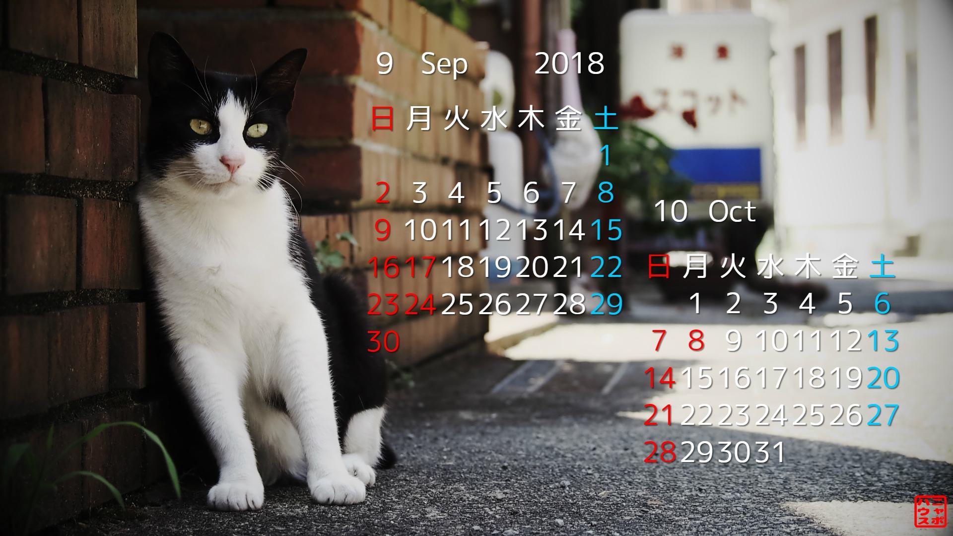 2018年9月・10月 猫デスクトップカレンダー