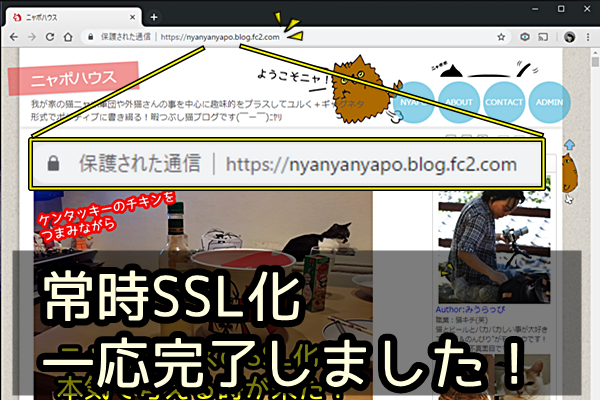 FC2ブログ 常時SSL化