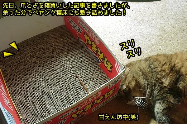 ペヤング 箱