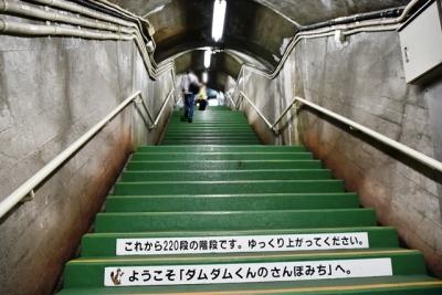展望台へ220段の階段