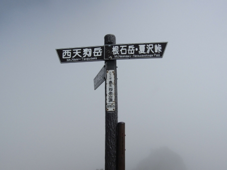180815天狗岳 (31)s