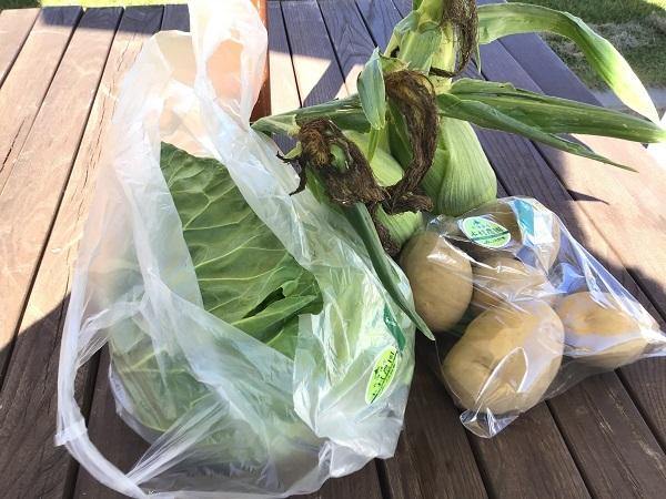 阿寒道の駅野菜1