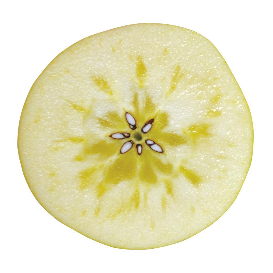 りんご 新品種 hff63果肉