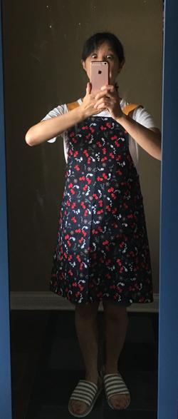 apron12.jpg