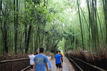 arashiyama1809.jpg