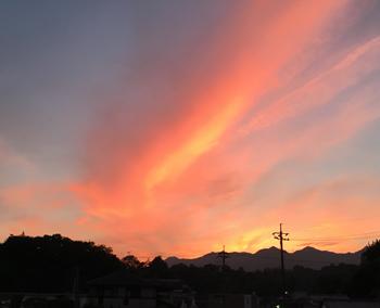 miyajima1847.jpg