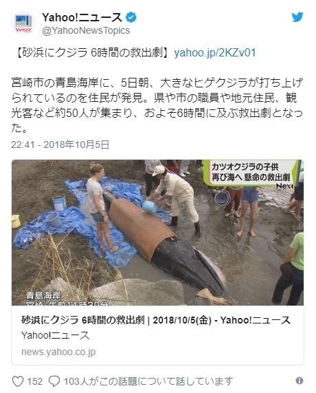 【九州】宮崎県青島の海岸に体長5メートルの「ヒゲクジラ」が打ち上げられているのが見つかる