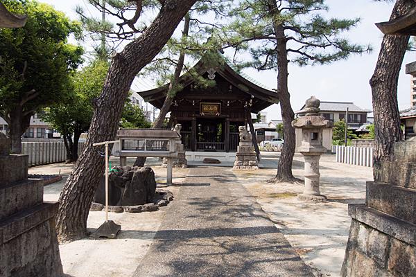 船頭場白山社参道と松の木
