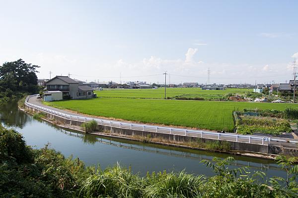 新茶屋秋葉社水路と田園風景