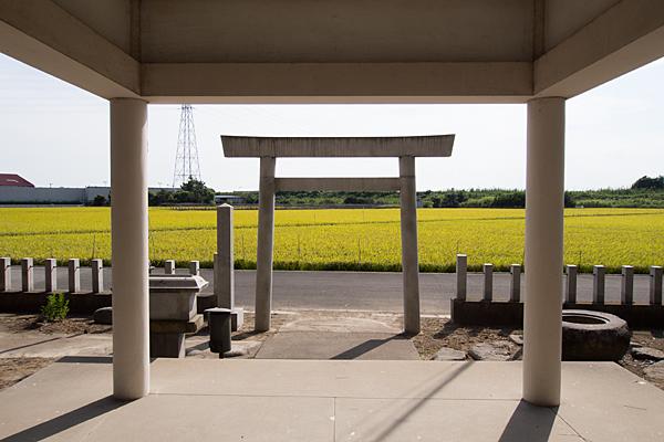 新茶屋秋葉社拝殿から田んぼ