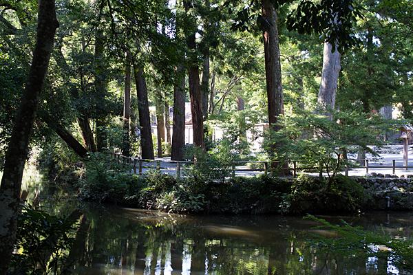 池と木立と外宮正宮