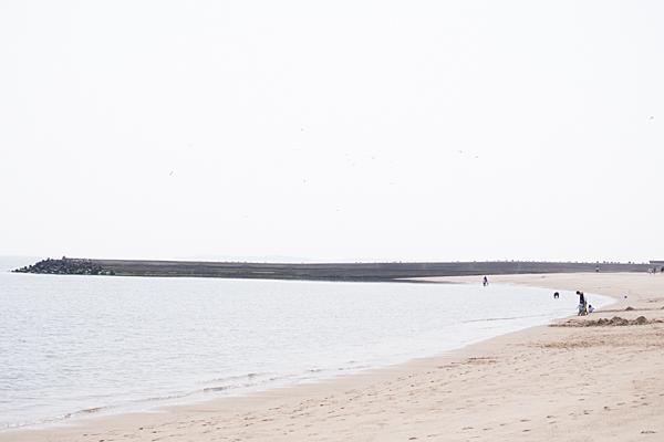 吉良海岸の砂浜