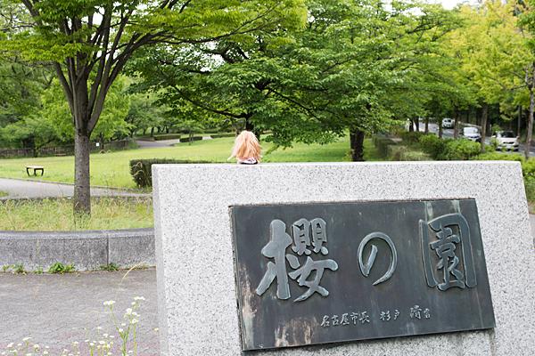櫻の園と人形