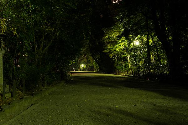 夜の熱田神宮参道