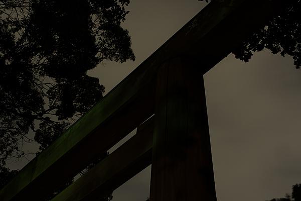 夜の熱田神宮鳥居