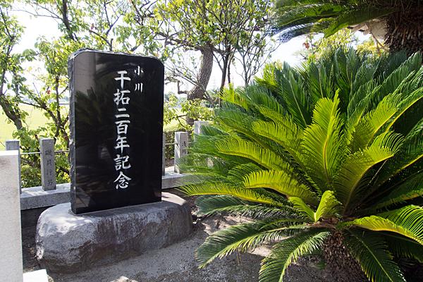 小川熱田社祈念碑とソテツ