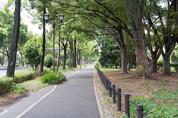 名古屋城前歩道