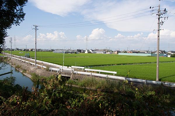 港区田園風景