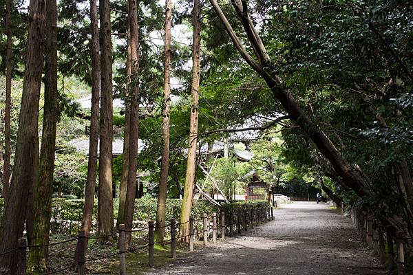 妙興寺境内