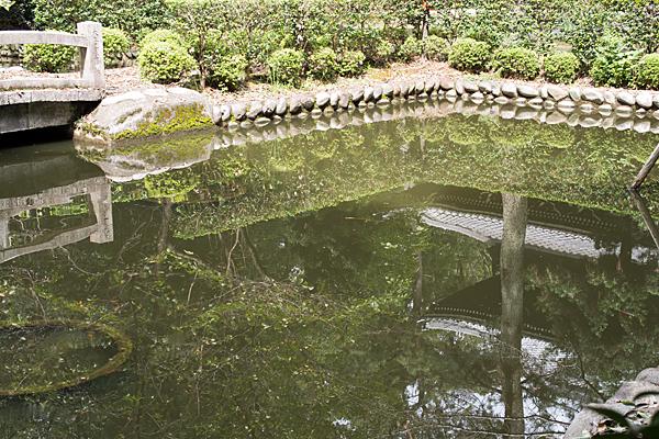 妙興寺池映り込み