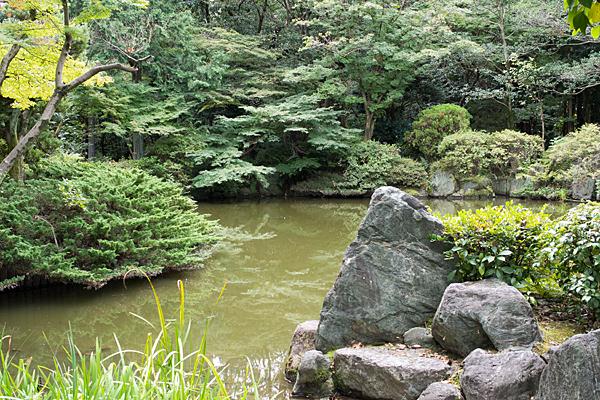 妙興寺庭園池