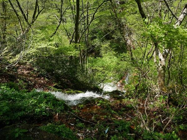 水が合流して川に