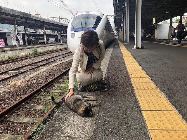 長崎駅ねことぴょん吉さん