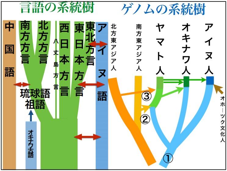 日本人 ゲノム 2