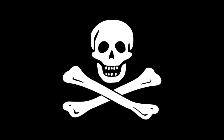 海の海賊と陸の海賊