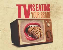 テレビ 脳