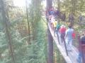キャピラノ吊り橋 014