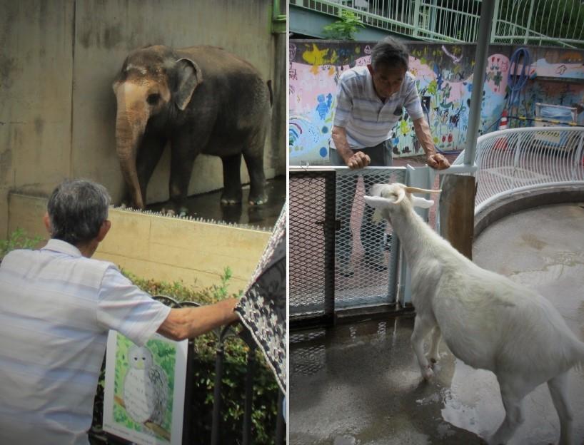 180811遊亀公園動物園4