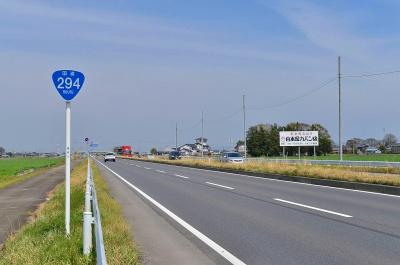 Route294.jpg