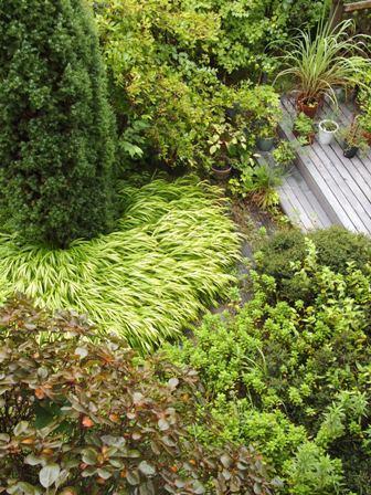my-garden 003 (4)