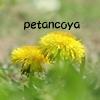 petancoya