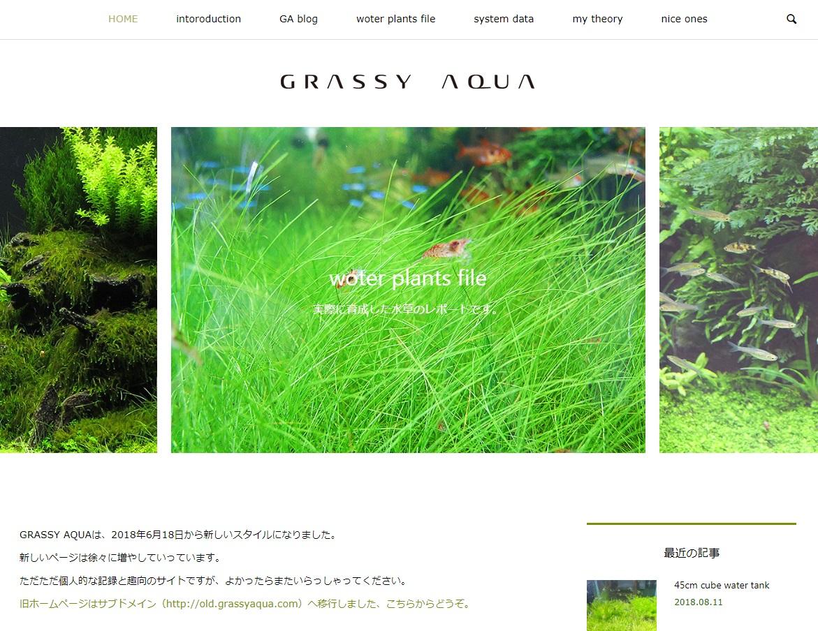 grassy aqua top