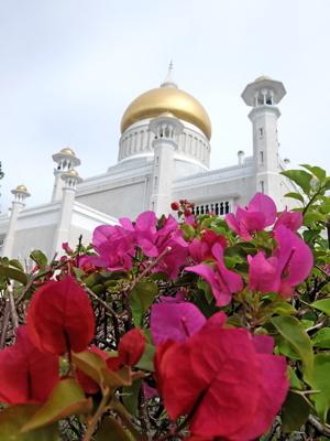 KLブルネイ117オールドモスク